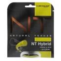 DUNLOP NT HYBRID SET 12 ML 1.31/1.25 MM